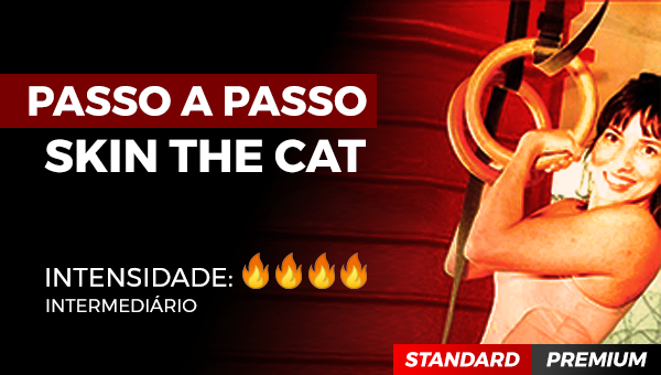 PASSO A PASSO DO SKIN THE CAT
